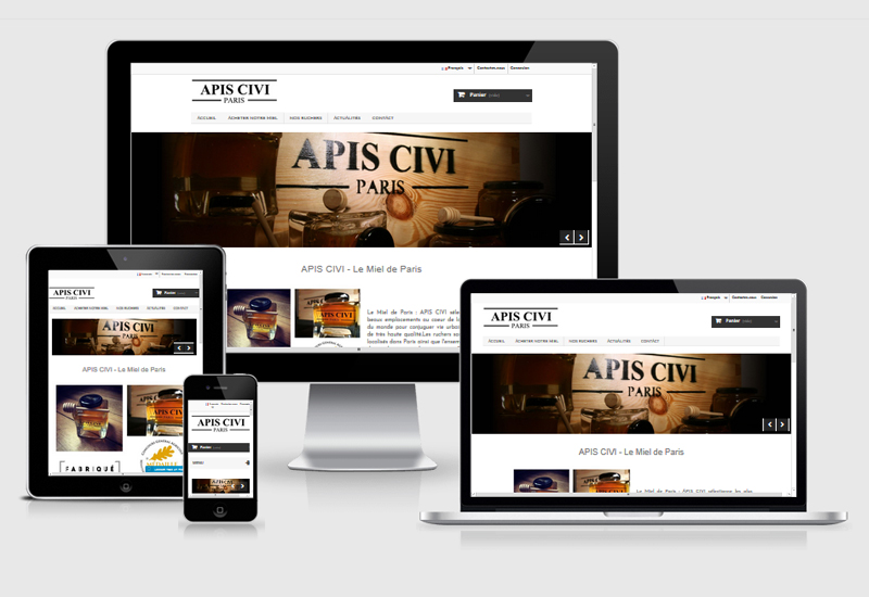 Site E-commerce | Apis-civi